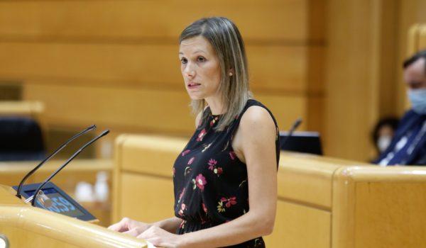 Cajeros multientidad en los pueblos para garantizar los servicios bancarios, la propuesta de Teruel Existe aprobada en el Senado