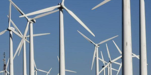 Teruel Existe propone la creación de una ley que ordene el despliegue de las renovables