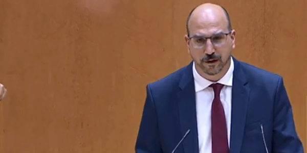 Teruel Existe defiende en el Senado sus enmiendas a los PGE y pide que se escuchen las demandas de las plataformas de la España Vaciada